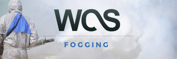 Fogging cleaning
